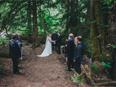 Darylann & Devin | Intimate Forest Wedding