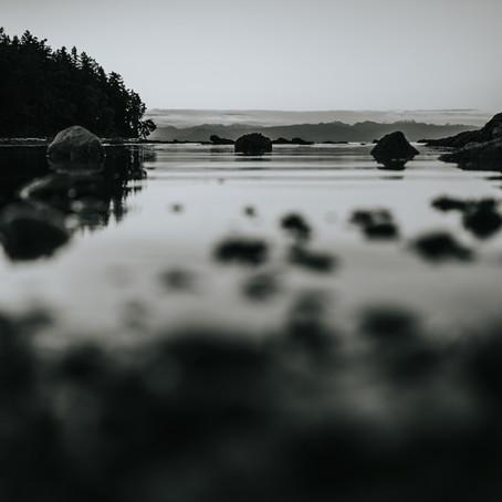 An Adventure At Dusk   Newcastle Island on a Summer Evening