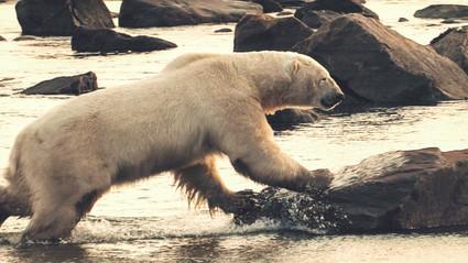 Manitoba Summer Framegrab - 09.jpg
