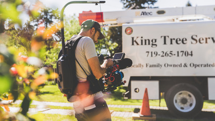 King Tree Services - BTS