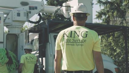 King Tree Services - Framegrab