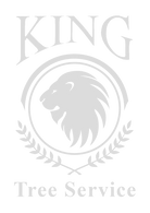 King tree logo-gray.png