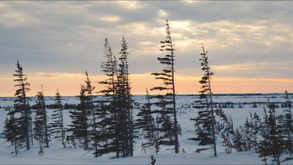 Manitoba Framegrab - 07.jpg