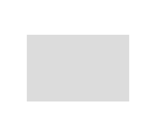 Small Logo - Airstream.png