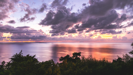 Dominica Frame - 05