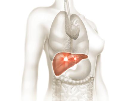 Curiosidades sobre o Fígado!