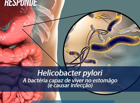 Helicobacter pylori: a bactéria capaz de viver no estomâgo