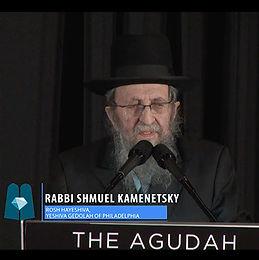 Honorable Mention by Rav Shmuel Kamenetzky Shlita