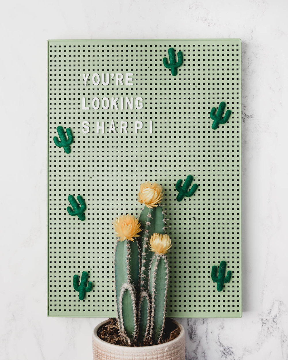 Cactus Green Letter Board