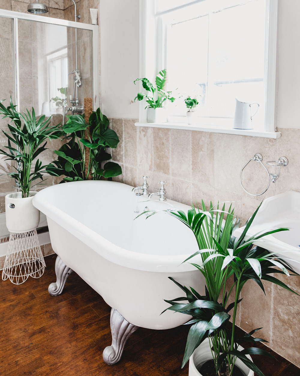 Plants around a roll top bath