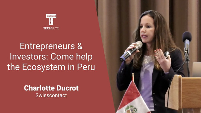 Entrepreneurs and investors, come help the peruvian ecosystem