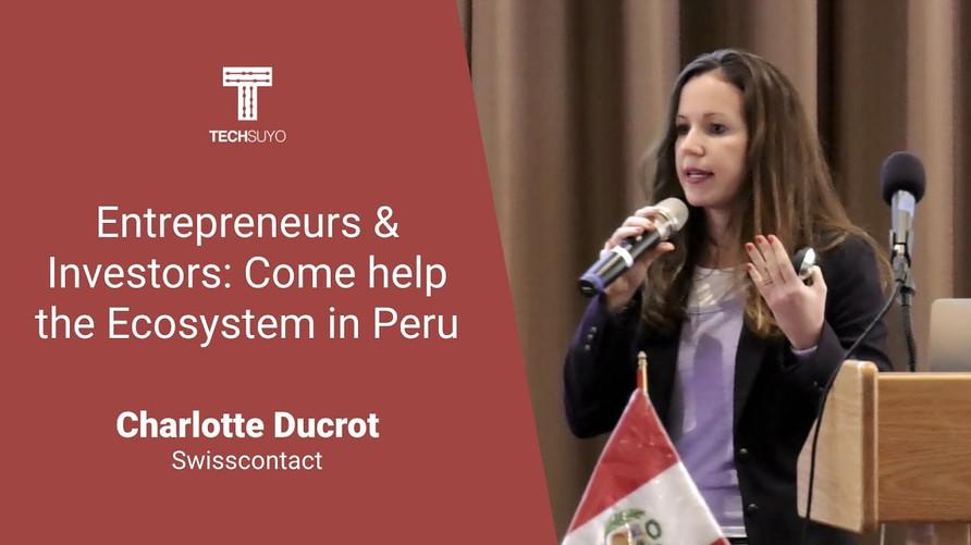 Entrepreneurs and investors, come help the peruvian ecosystem
