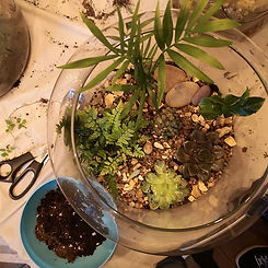 More gorgeous terrariums made last night at the workshop _forestersarmsbedford. Great fun