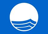 Blue_Flag_Logo 4.png