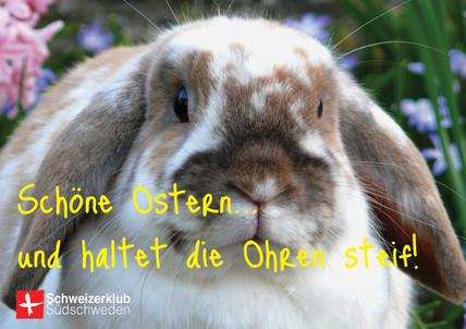 HALTET DIE OHREN STEIF!
