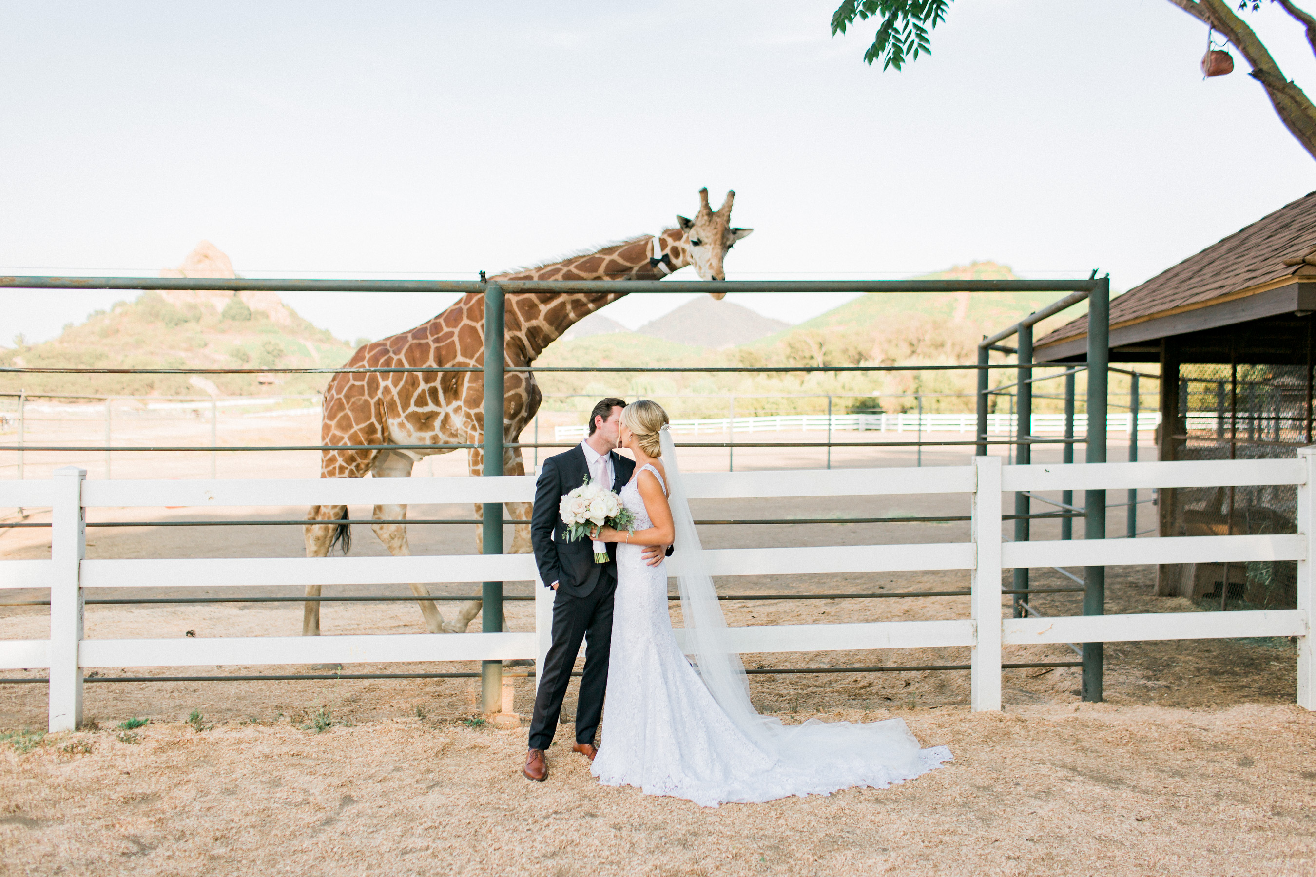 Saddlerock Ranch Wedding-0878
