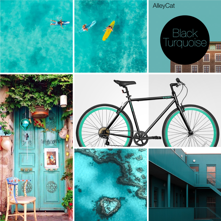 MoodBoard2021AlleyCat-BlackTurquoise.png