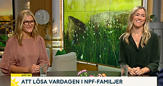 SMART Psykiatri_Lotta Borg Skoglund_Martina Nelson_TV4