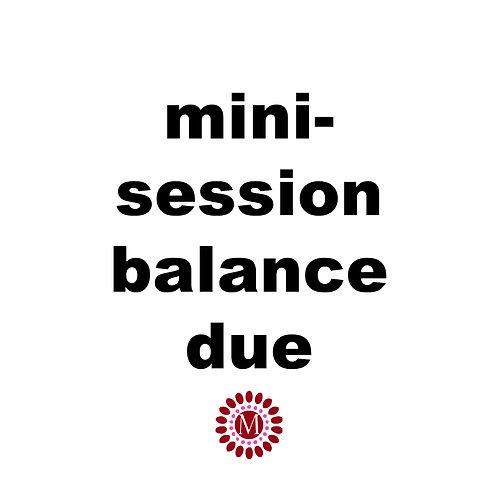Pay Balance of Mini-Session