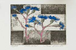 Kornblume - sacre bleu