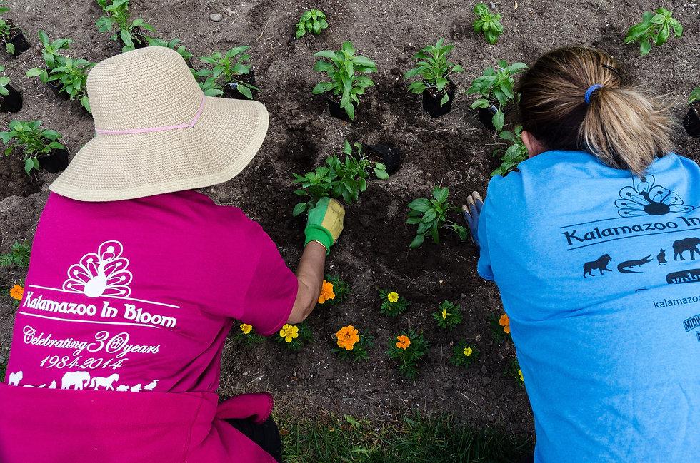 Side by side volunteers.jpg