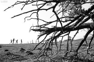 Bojan Rupnik Photography, črnobela fotografija: četica in Slivnica