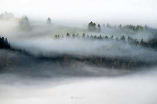 Rovtarsko hribovje