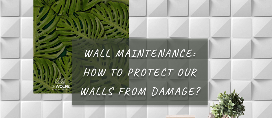 Wall Maintenance: How To Protect Our Walls From Damage?