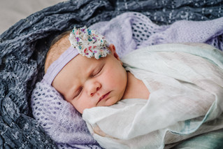 Fiona {newborn}