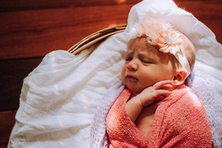 Addie {newborn}