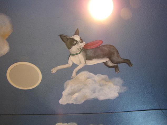 Pet Murals