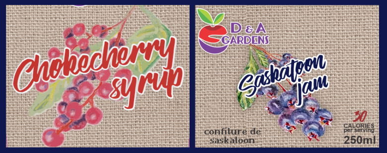 Chokecherry and Saskatoon Graphics