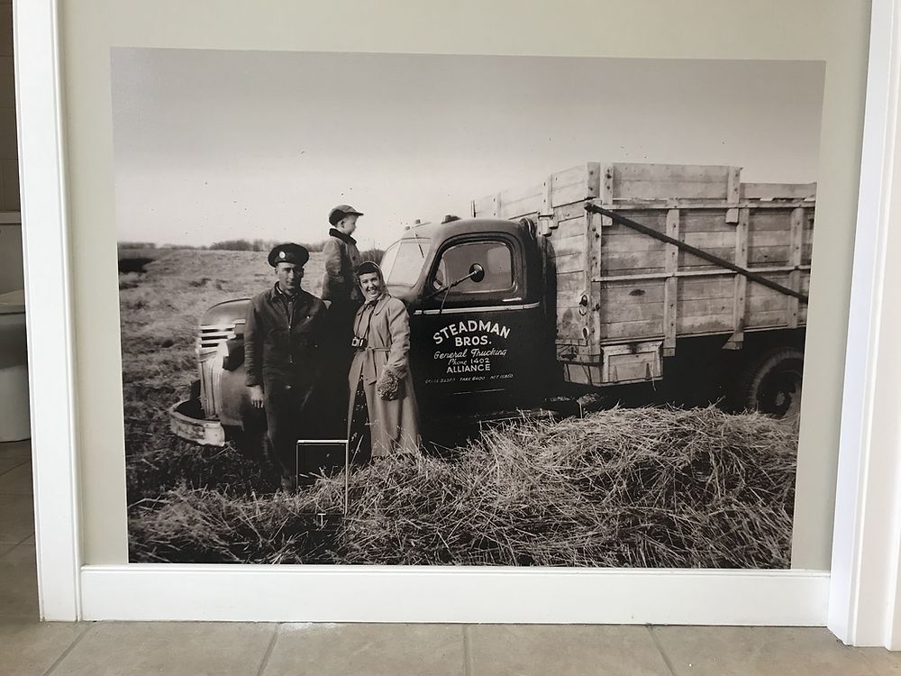 Restored central Alberta harvest photo from the 1940's.
