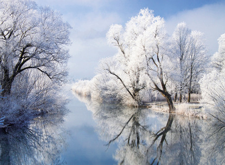 24. Dezember - Resilienz Adventskalender
