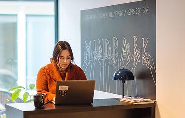 Mindpark Lund 2.jpg