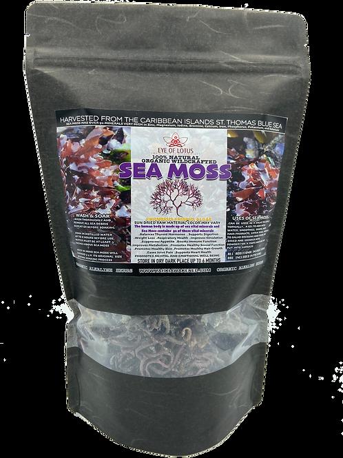 SEA MOSS 100% Raw Organic Wildcrafted 1/2 Ib