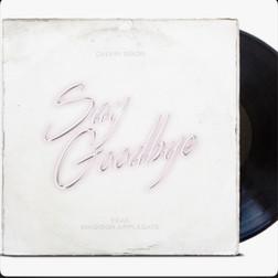 Say Goodbye - Single by Calvin Dixon
