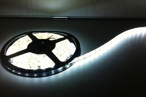 LED Tape Cool White IP65