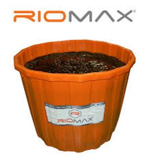 Riomax.jpg