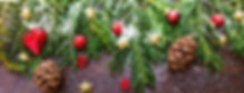 Christmas Border 2_edited.jpg