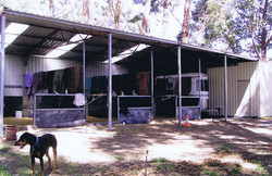 Stable Shed