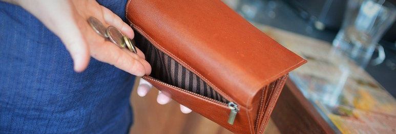 Women's Checkbook Wallet/Purse Natural Vegetable Tan Leather