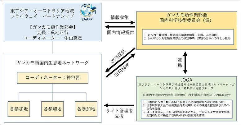 役割図.jpg