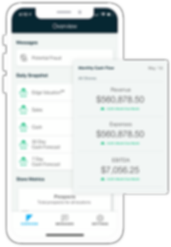 Ceterus bookkeeping and accounting mobile app