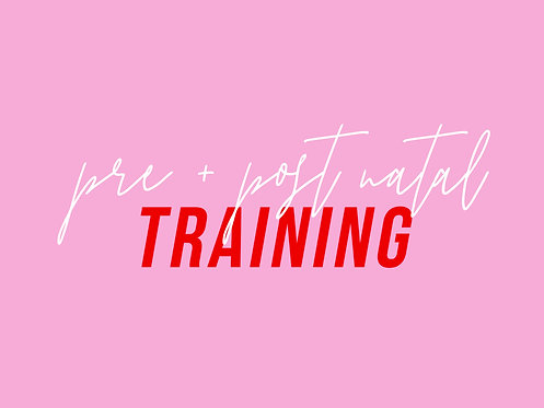 Pre and Post Natal Training Session