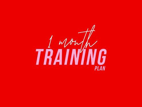 1 Month Training Plan