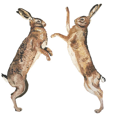 Boxing Hares in Gouache