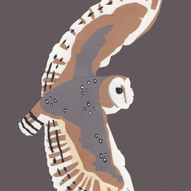 Barn Owl Papercut