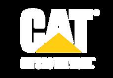 Cat_LetsDoTheWork_Lockup_RBG_Reverse-01.