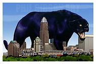 Panther Nation Football Carolina Panthers Art Pint Poster